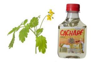 caña_ruda bebida